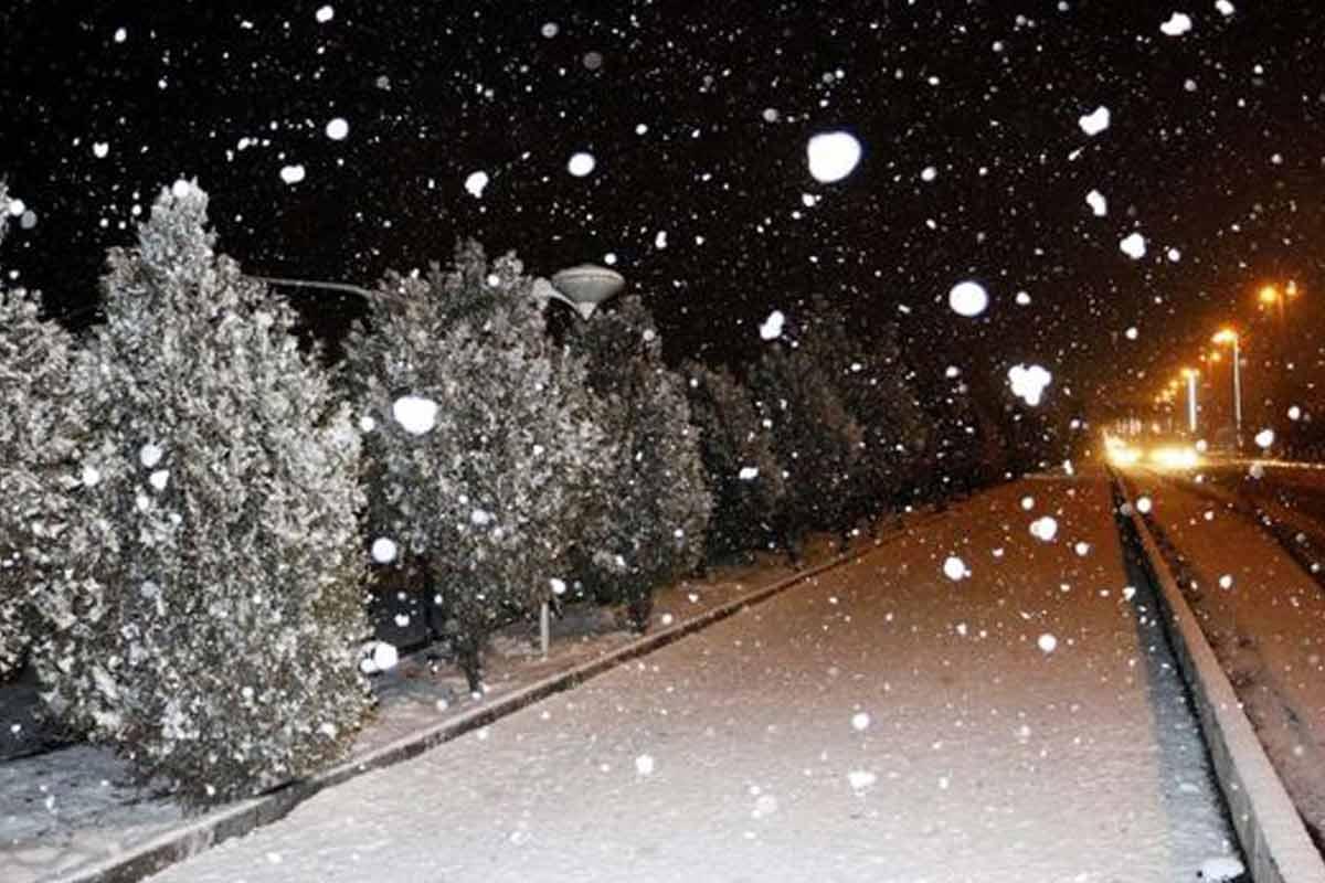 ترانه ی زیبای «برف»/ مهرداد کاظمی