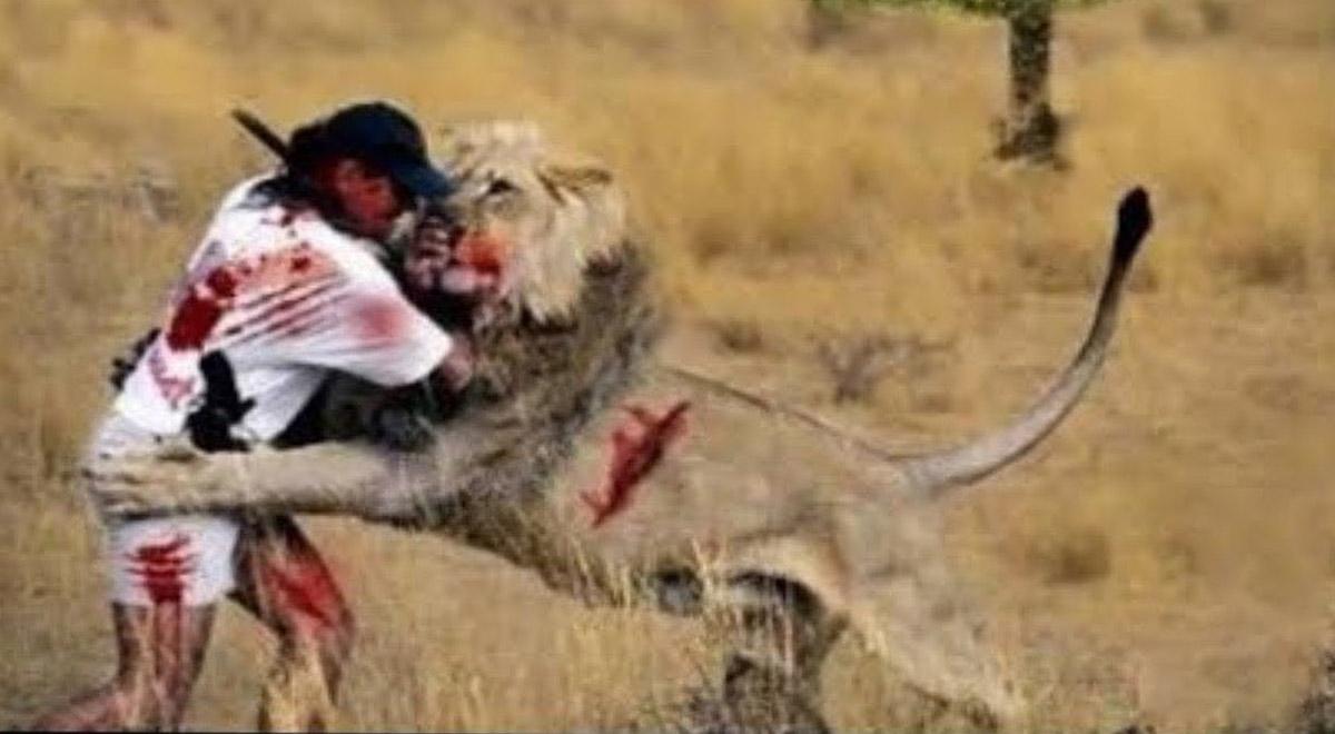 کلیپی از خطرناک ترین اتفاقاتی بین انسان و حیوانات!