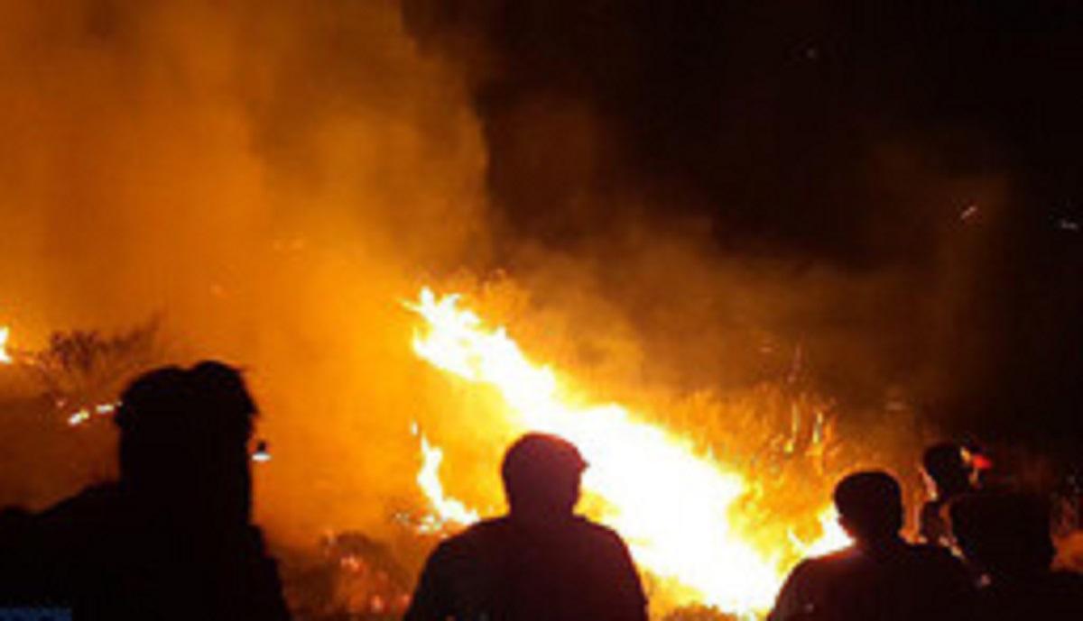 آتش در مراتع پاوه