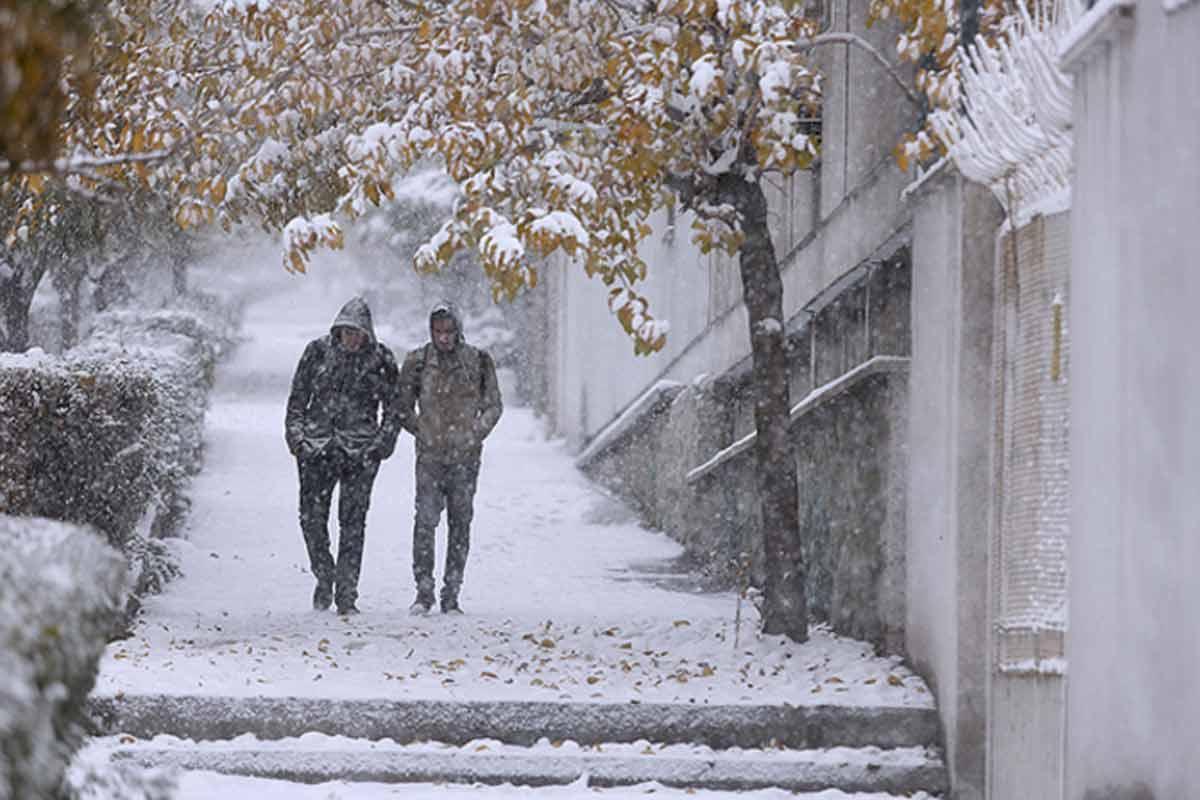 ترانه ی «زمستان»/ حمیدرضا فولادی