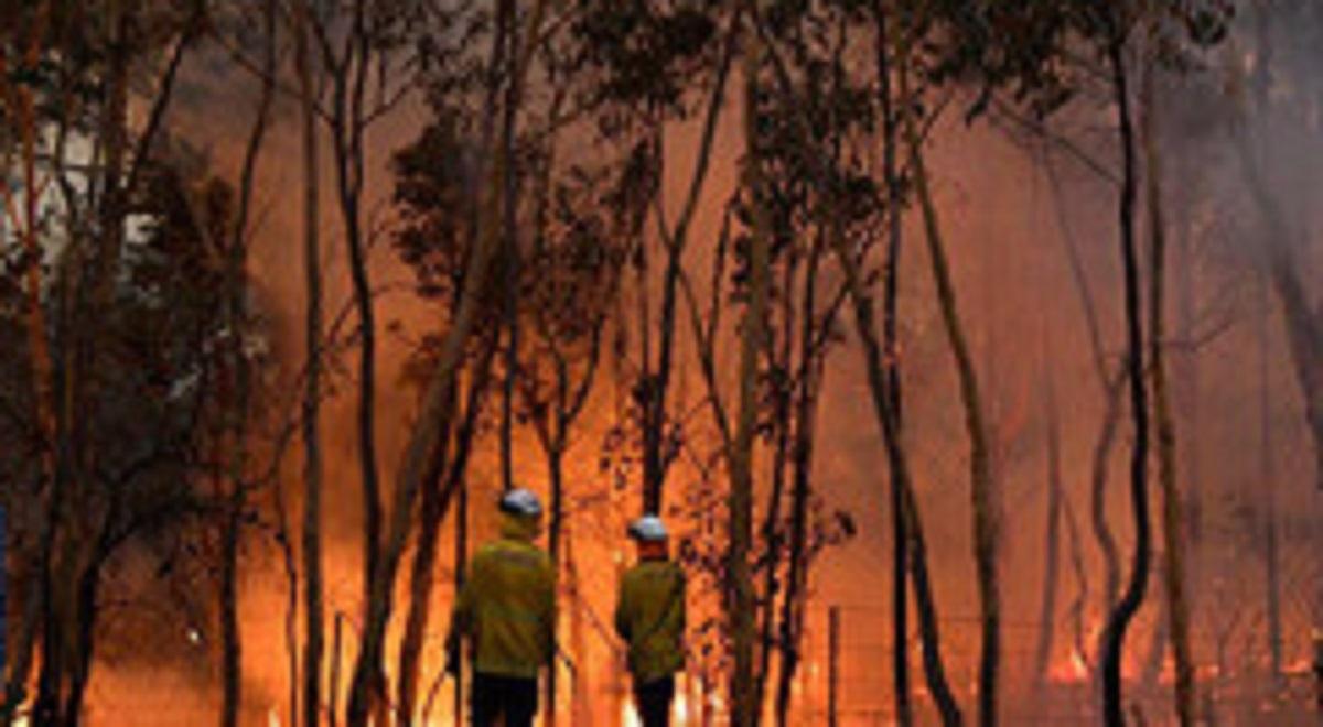 آتش گسترده در پرجمعیتترین شهر استرالیا