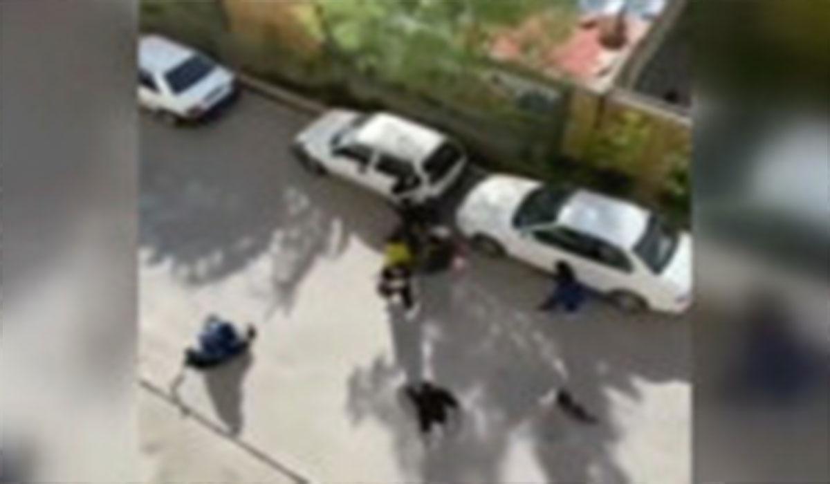 دعوا و کتککاری چند دختر جوان در خیابان