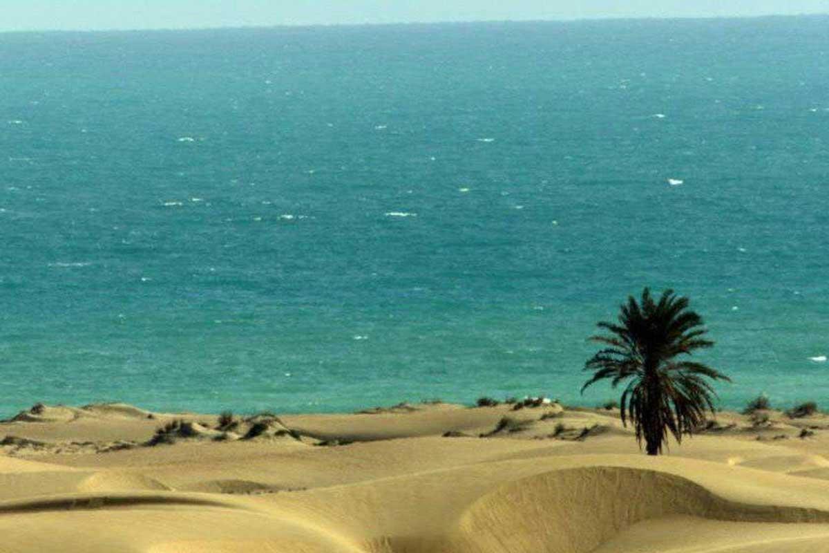 آواز «به دریا بنگرم دریا ته بینم»/ جلال الدین محمدیان