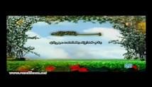 راغب مصطفی غلوش - تلاوت مجلسی سوره مبارکه نساء