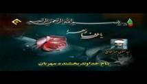 سید متولی عبدالعال - تلاوت مجلسی سوره مبارکه انسان (تصویری)