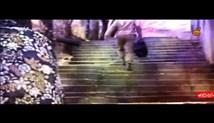 شهید ابراهیم هادی - مجموعه مستند سوره های سرخ