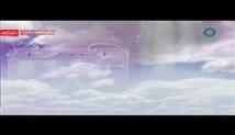 حجت الاسلام فاطمی نیا - سیری در صحیفه سجادیه جلسه چهل و هفتم - 1395/03/11 صوتی