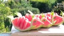 تزیین هندوانه به شکل پرنده