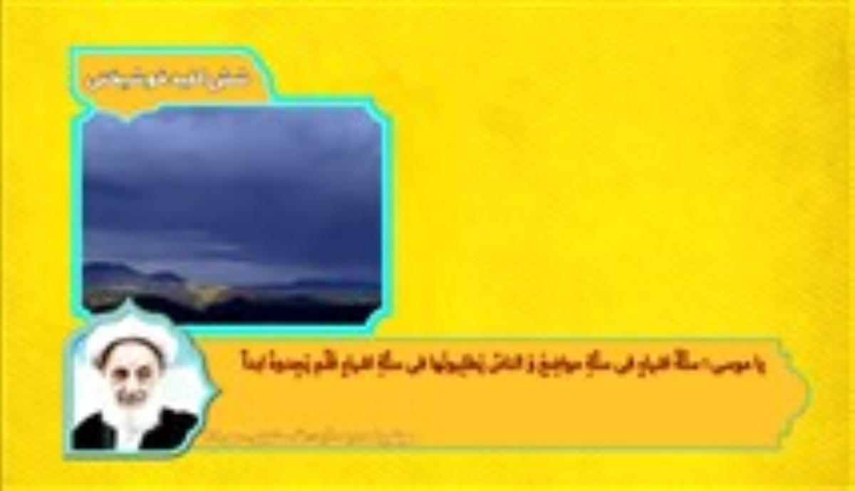 امام رضا علیه السلام