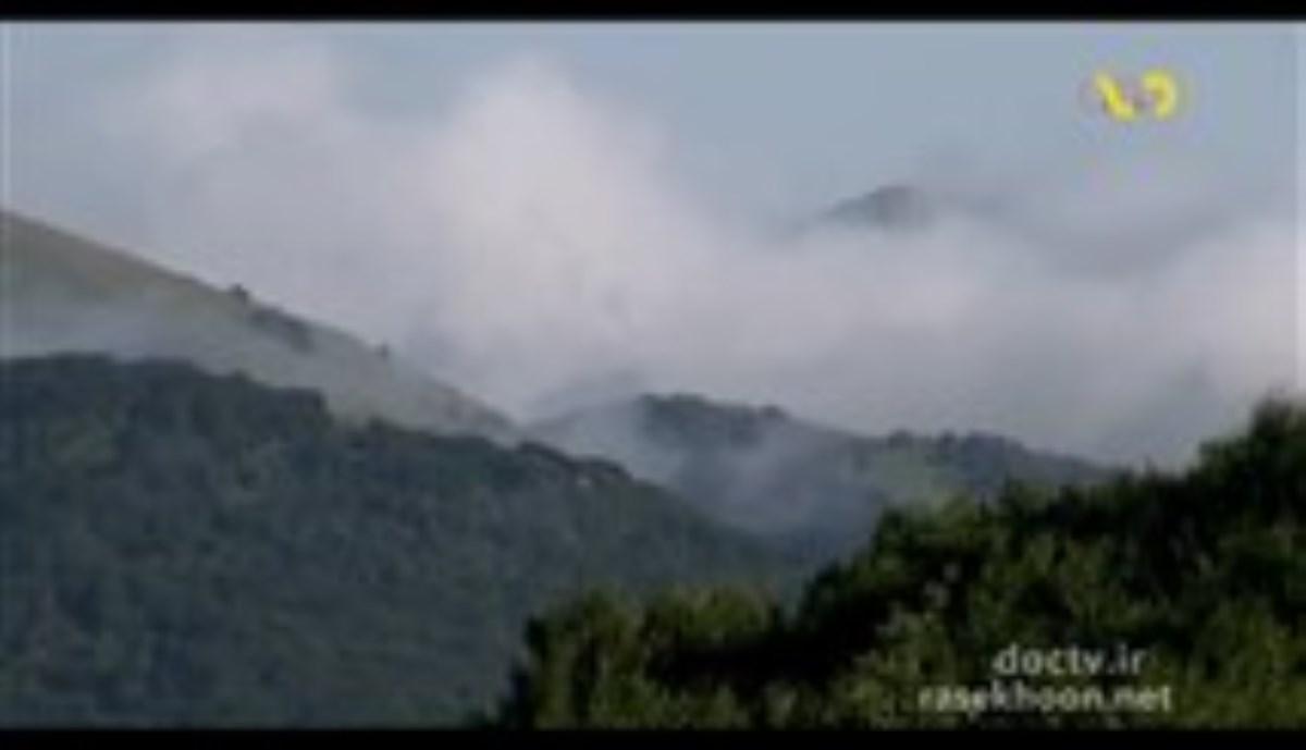مستند حافظان سوها