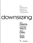 کوچک سازی(Downsizing)