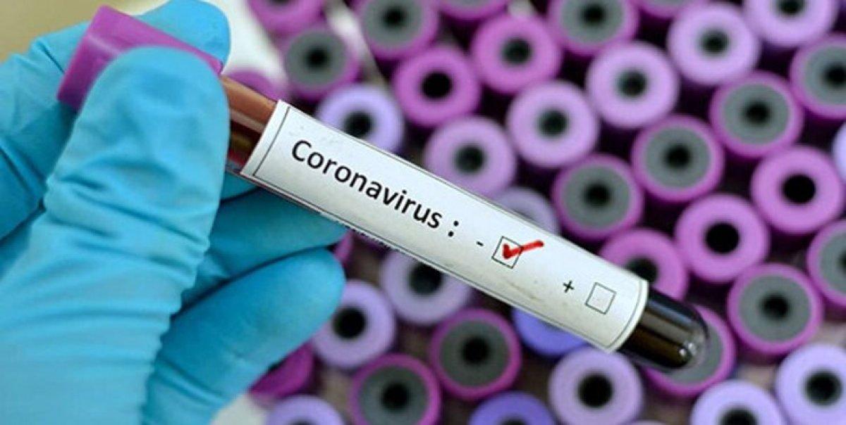 دو نفر به علت ویروس کرونا در قم فوت کردند