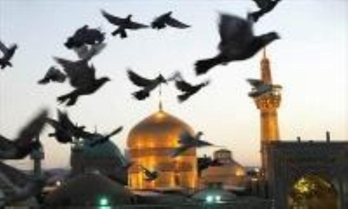 پذیرش دانشجوی حج و زیارت در دانشگاه امام رضا (ع)