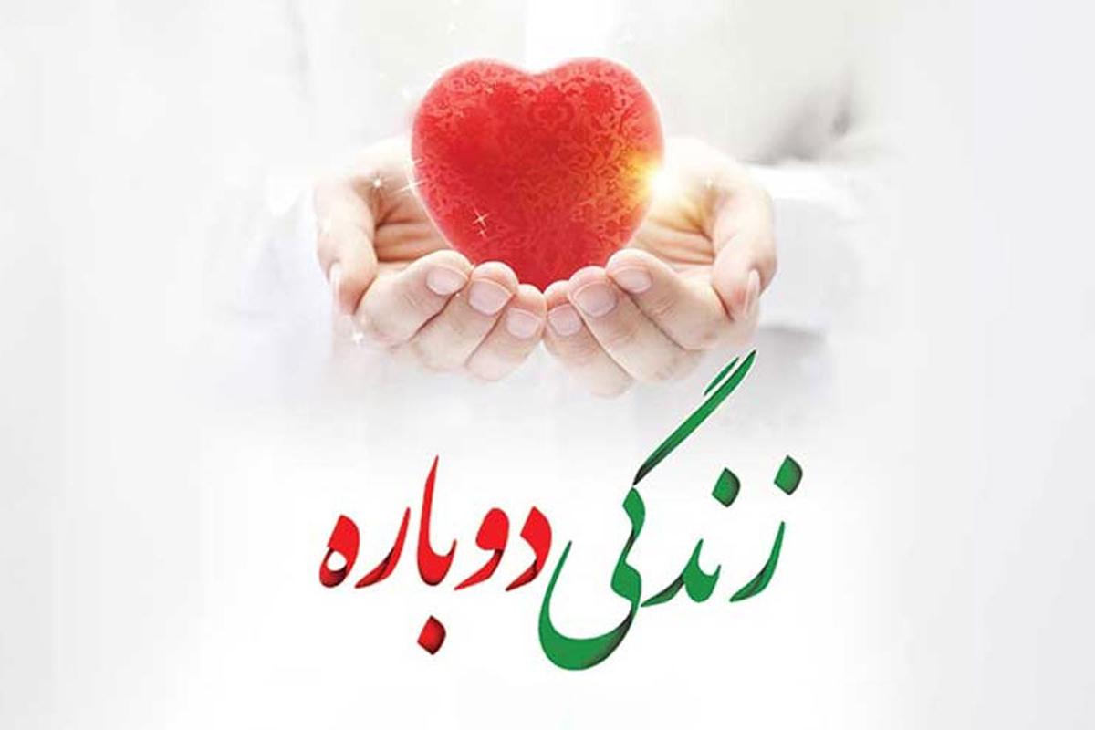 پاسخهای فقهی آیتالله العظمی مکارم شیرازی پیرامون وجوب اهدای عضو