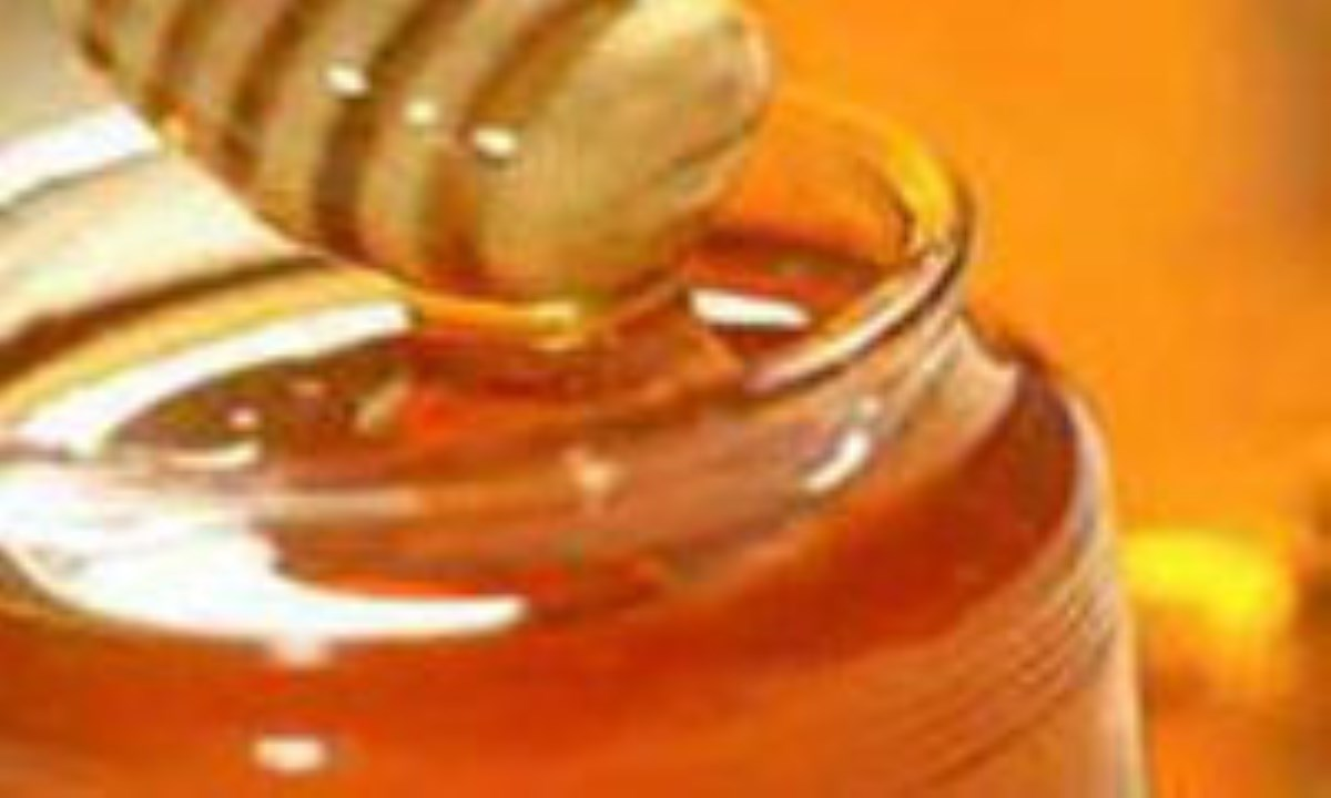 زنبورهای چینی کام کرمانیها را تلخ کردند