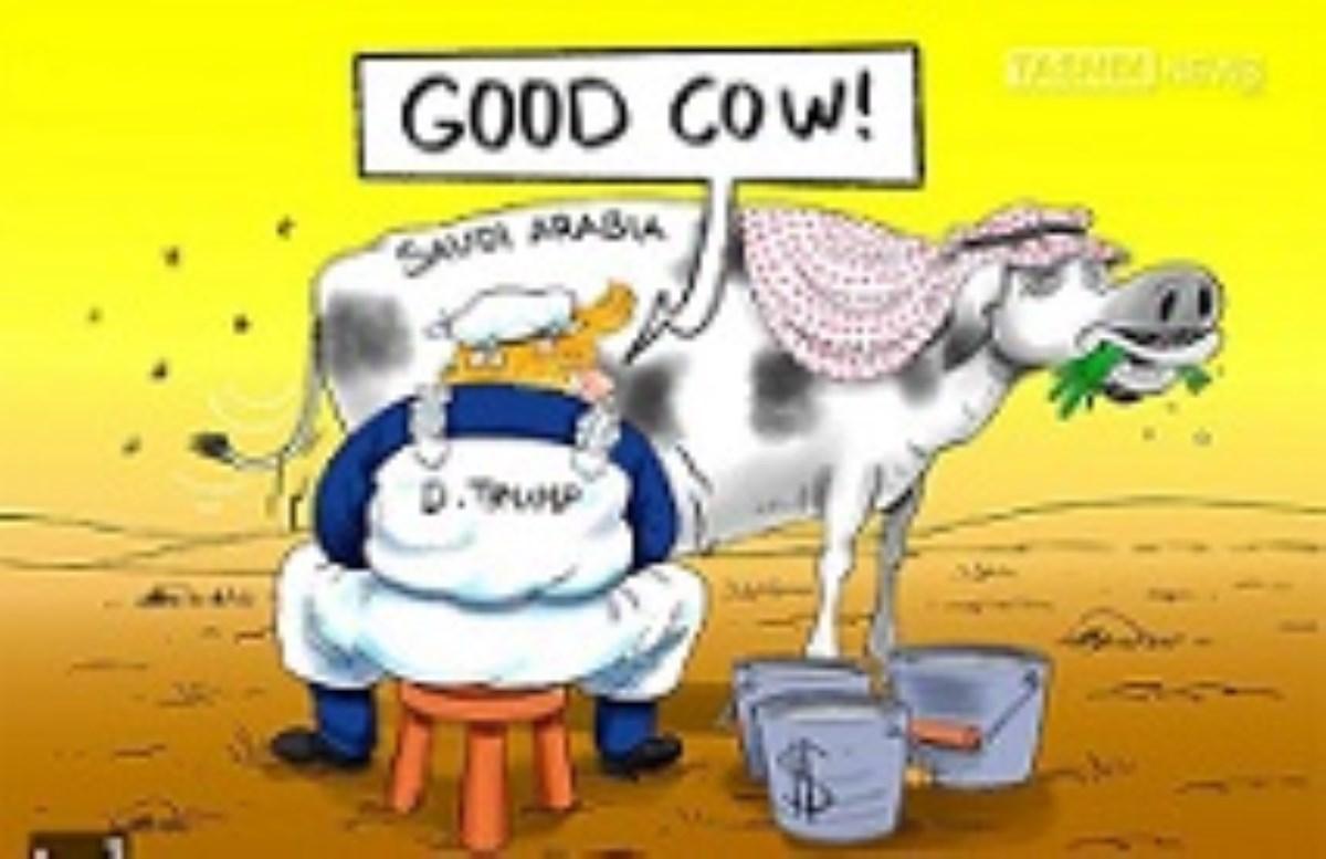 تعریضی بر یک کاریکاتور که بینالمللی شد