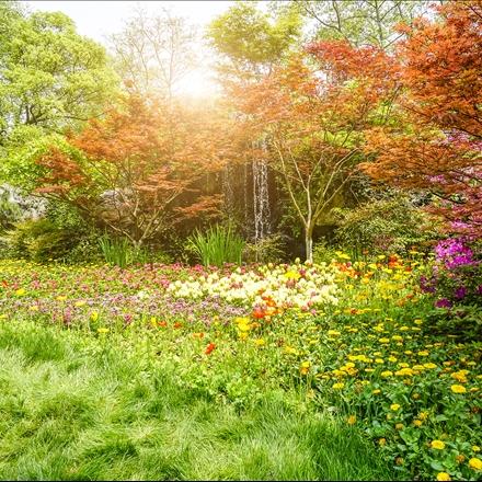 منظره زیبای بهاری