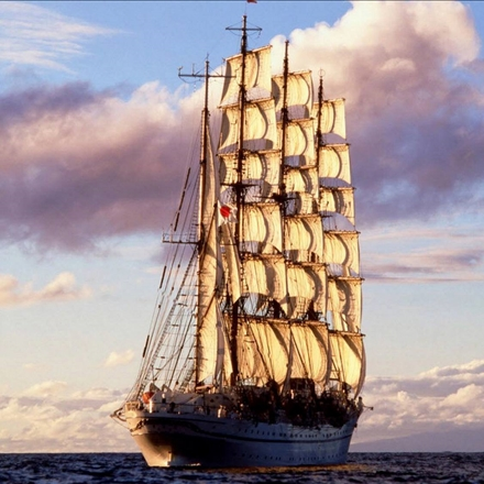 انواع کشتی ها