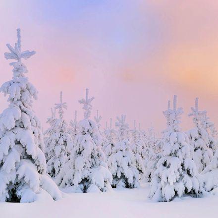 روزهای برفی