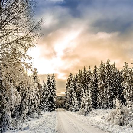 فصل زیبای زمستان