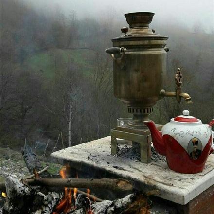 چای داغ در جنگل گلستان