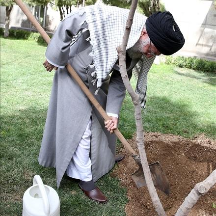 کاشت نهال توسط مقام معظم رهبری در هفته منابع طبیعی
