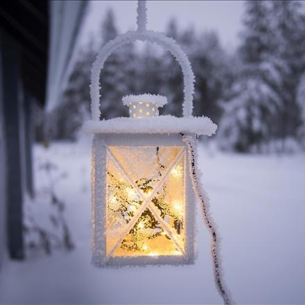 عکسی زیبا از زمستان