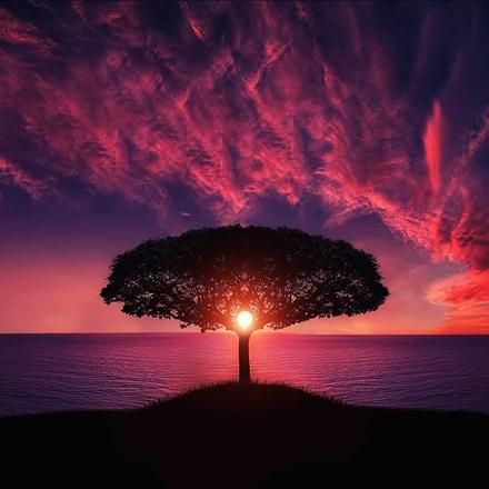 عکس طبیعت رویایی
