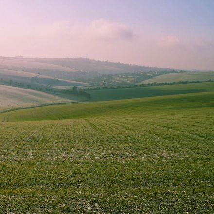 مراتع سبز در گرمای تابستان