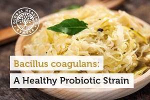 باکتری های کوآگولانس: یک پروبیوتیک سالم