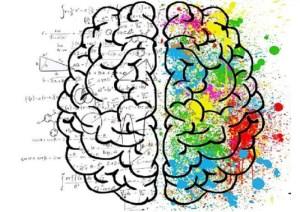 تعلیم و تشکیل ذهن