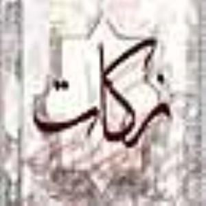 دومين زير بناى اقتصادى اسلام(2)