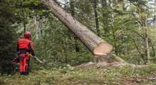 تغییر سبک زندگی برای ممانعت از تخریب محیط زیست