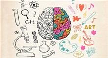 خصوصیات نیمکره راست مغز