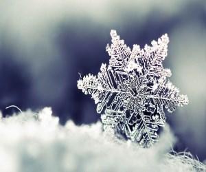 برف می بارد آرام آرام