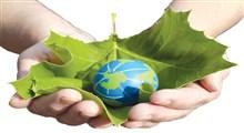 نقش حیاتی درختان در محیط زیست و ضرورت حفظ آنها