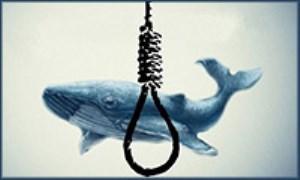 مراحل بازی نهنگ آبی