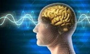تعریف اصطلاحات مکتب رواندرمانی «واقعیت درمانی»