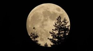 اگر ماه نباشد چه می شود؟