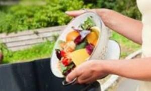 هدر رفتن غذا: کاهش یا بازیافت؟