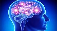 راهکارهای ساده برای افزایش انرژی مغز