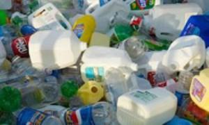 بهرهگیری علمی نوجوانها از کرم جهت تجزیه زباله پلاستیکی - 2