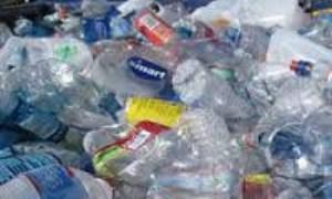 بهرهگیری علمی نوجوانها از کرم جهت تجزیه زباله پلاستیکی - 1