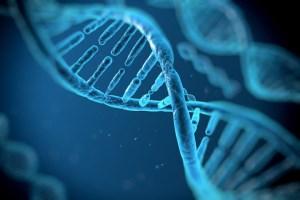 یک چرخش جدید روی DNA