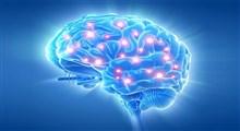 برنامهی بی خطر درمان با ذهنآگاهی