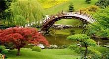 رفتار زیبا در گرو نگره زیبایی شناختی به طبیعت