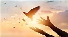عفو و بخشش با قدرت