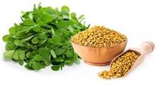 دانه شنبلیله و ارتباط آن با افزایش شیرمادر