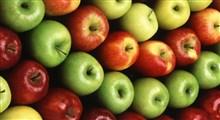 اطلاعاتی جالب در مورد تنوع سیبها و خاستگاه آنها – قسمت دوم