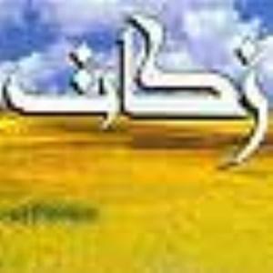 دومين زير بناى اقتصادى اسلام(1)
